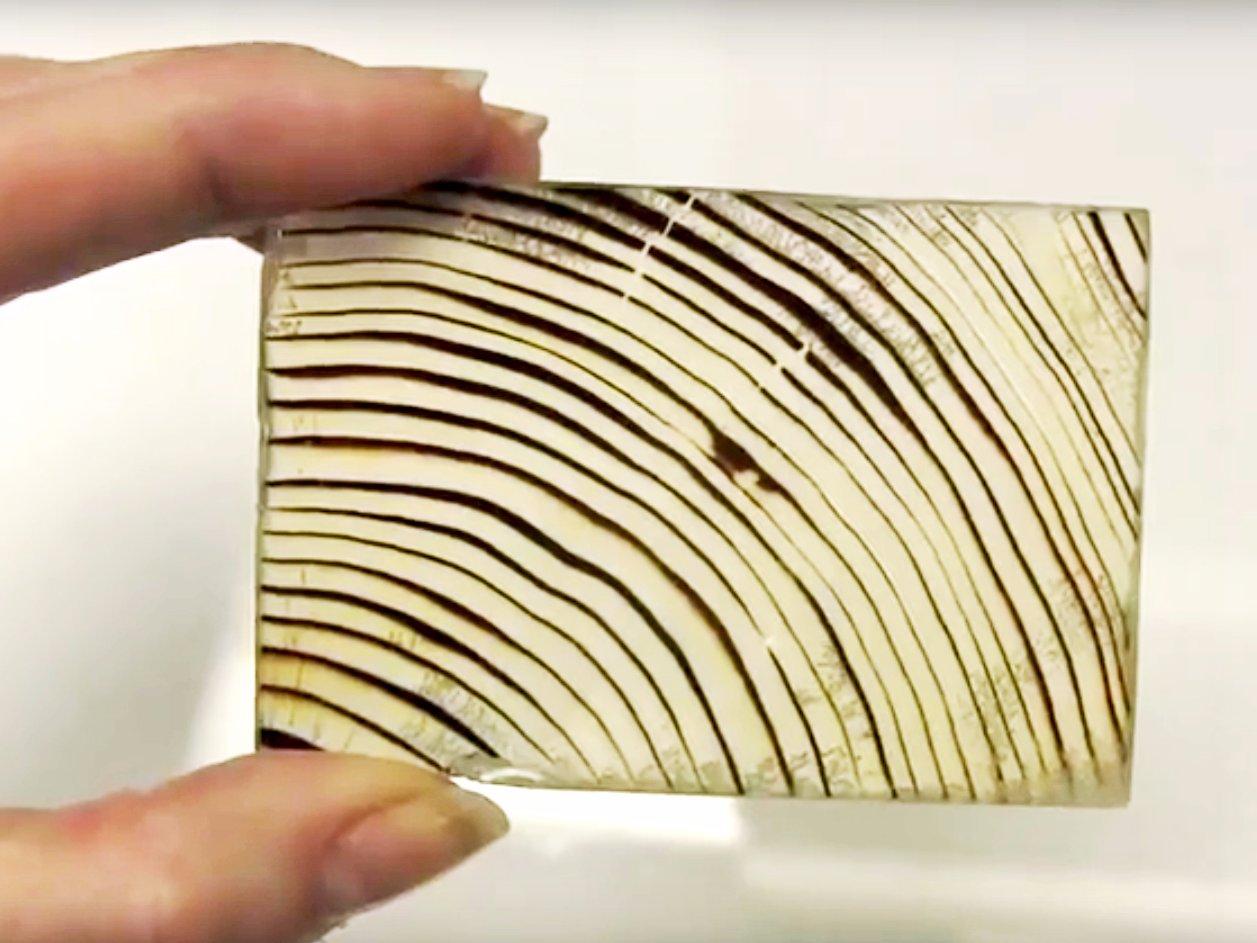 چوب شفاف چیست؟