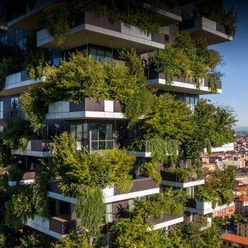 جنگل عمودی در معماری شهری